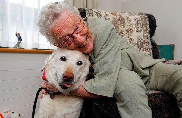 Пожилых поддержат домашние питомцы