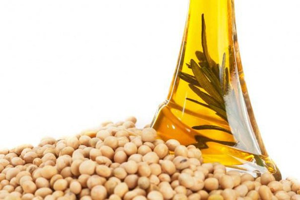 Соевое масло вызывает ожирение