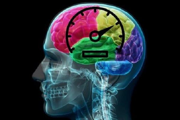 В голове обнаружен спидометр. 13992.jpeg
