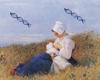 Раннее материнство передается по наследству